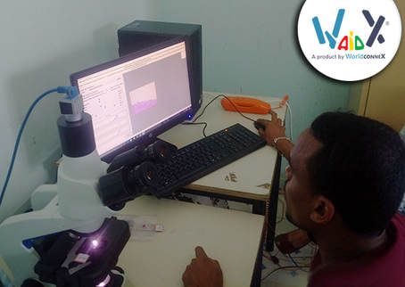 WaidX: ICT innovation applied to diagnostics saves lives. Horn of Africa project in Djibuti.